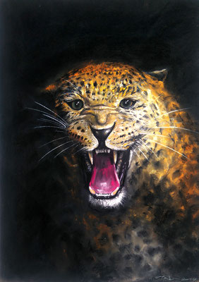 """Leopard"", Pastell, 50 x 70"