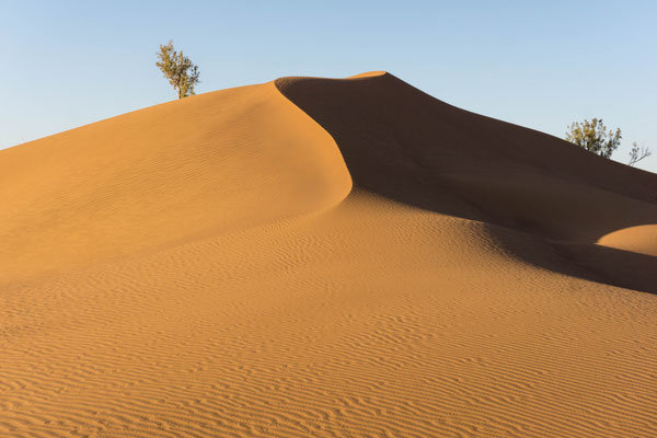 Voyage méditation dans le désert marocain