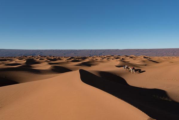 Trek entre femme dans le désert Marocain