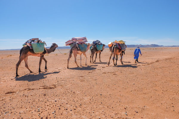 Voyage & méditation dans le désert Marocain