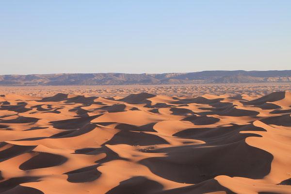 Vue depuis la plus haute dune de l'erg Zahar