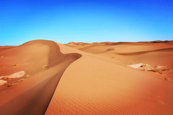 L'erg de la vallée du Drâa Maroc