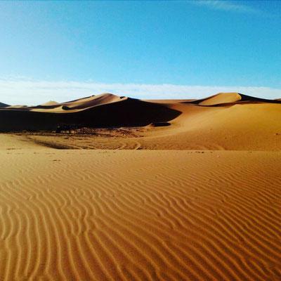 La sérénité du désert