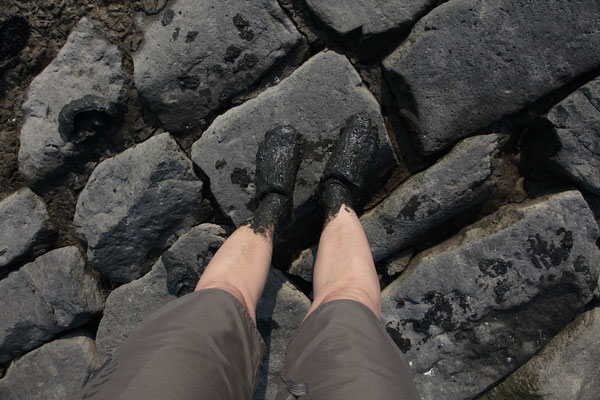 Abgesoffen im Wattenmeer