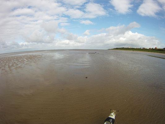 Wattenmeer in Ribe