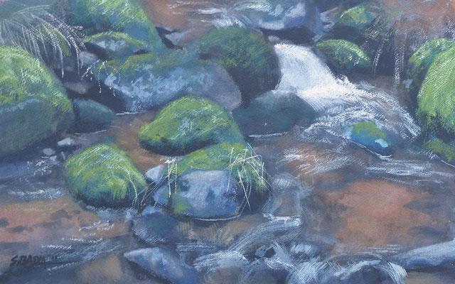 Ruisseau  - aquarelle sur papier 55 x 34 cm