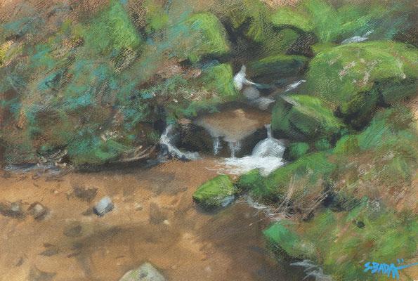 Brandbach 2 - aquarelle sur papier - 55 x 38 cm