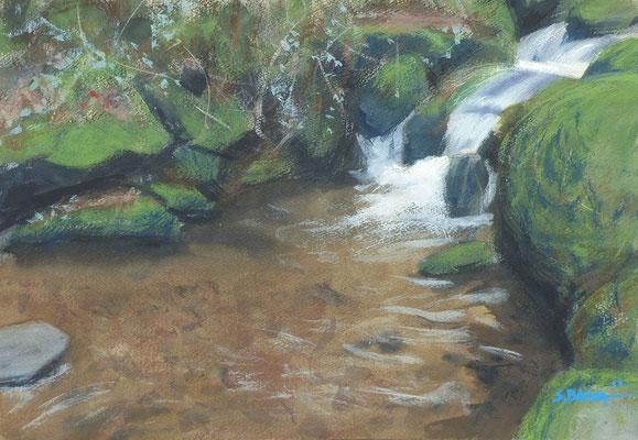 Brandbach - aquarelle sur papier - 55 x 38 cm