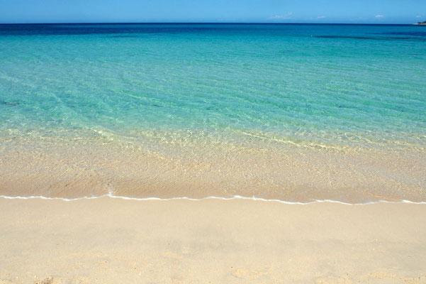 Philippines Tropical Paradise Retreat