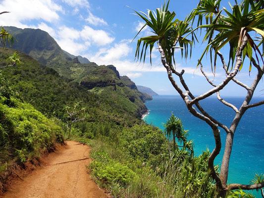 Hawaii Aloha Spirit Retreat