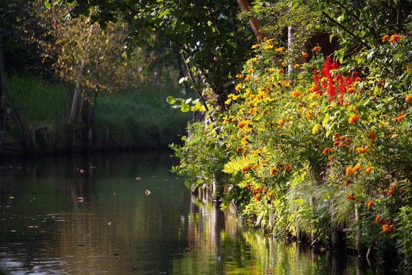 Vorgartenidylle im Spreewald