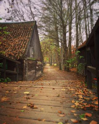 Herbstspaziergang im Dorf Lehde im Spreewald
