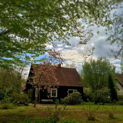 Ortsteil Kaupen bei Lübbenau/Spreewald