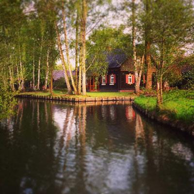 typisches Holzhaus im Ortsteil Kaupen bei Lehde im Spreewald