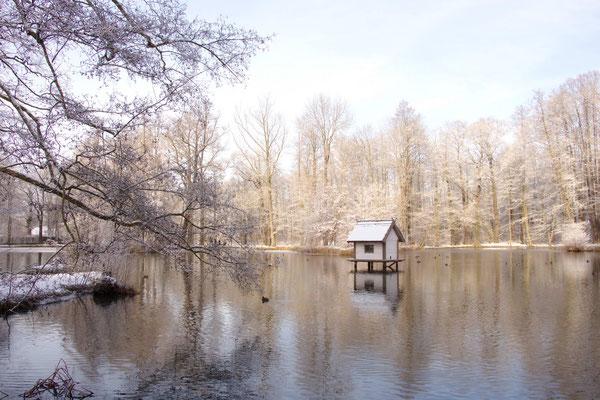 Schlossteich im Schlosspark Lübbenau