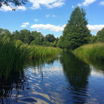 Kahnfahrt durch die Wiesenlandschaft bei Lehde im Spreewald