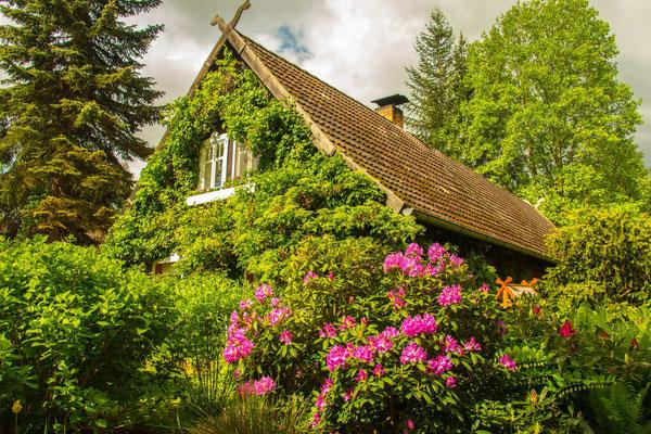 Spreewaldhaus zwischen Lübbenau und Lehde