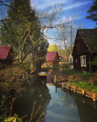 zwischen Lübbenau und Leipe im Biosphärenreservat Spreewald
