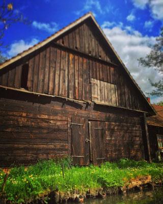 alte Holzscheune im Ortsteil Kaupen in Lübbenau/Spreewald