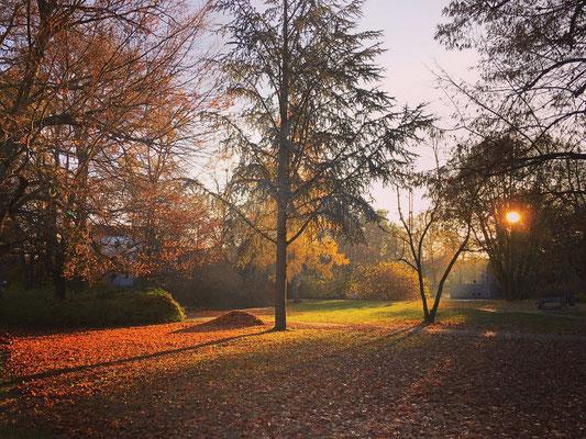 Ausflugsziel Blechenpark in Cottbus