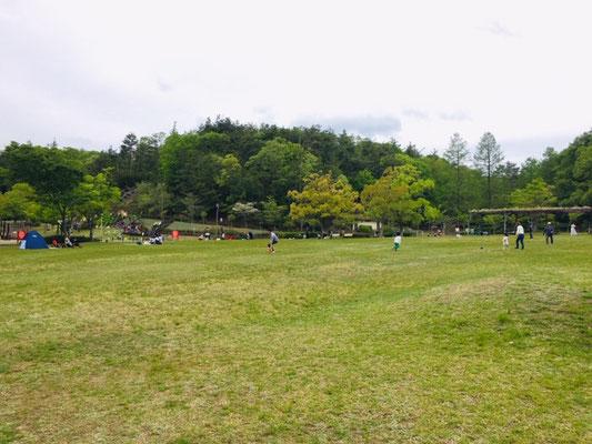 県営各務原公園_ピクニック・芝生広場_001
