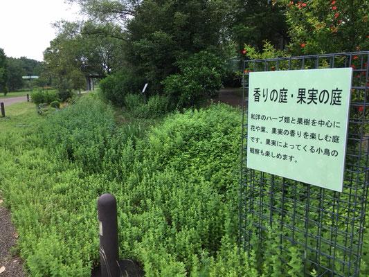 フラワーパーク江南_香の庭・果実の庭