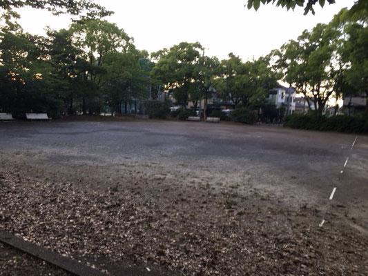 楠公園_広場_001