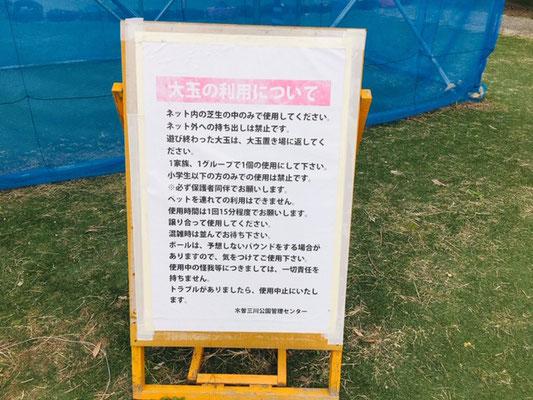 木曽三川公園センター_大玉・バッテリーカー_003