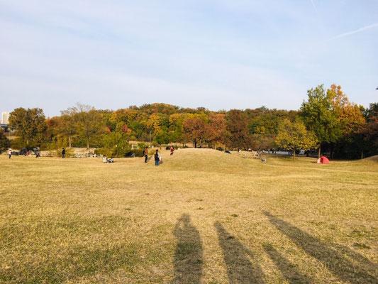 天白公園_芝生広場_001