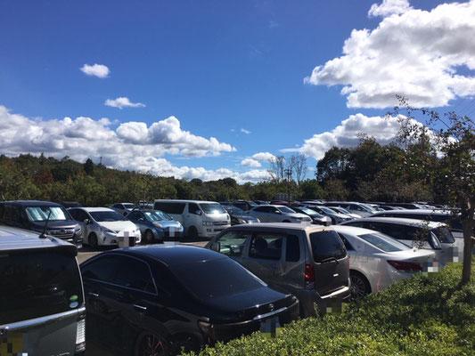 市民四季の森_東側駐車場_001