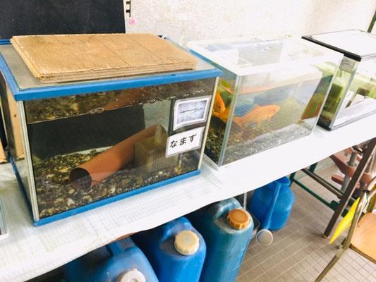 江南市交通児童遊園_管理事務所_002
