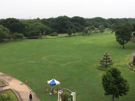フラワーパーク江南_屋上からの景色