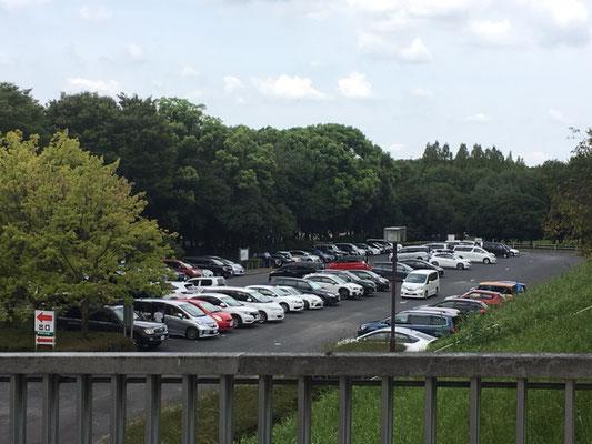庄内緑地公園_駐車場_001