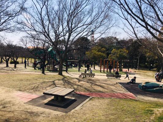 碧南明石公園_ピクニック・芝生広場_005