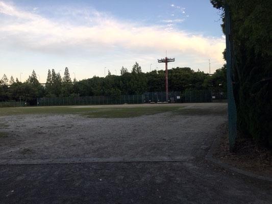 楠公園_野球場