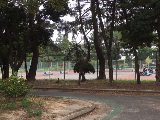 庄内緑地公園_テニスコート
