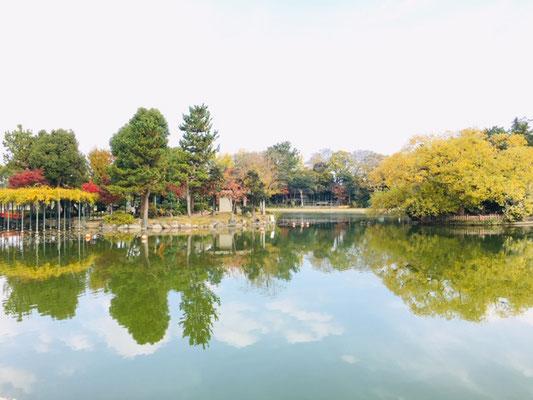 天王川公園_季節の花・植物_006