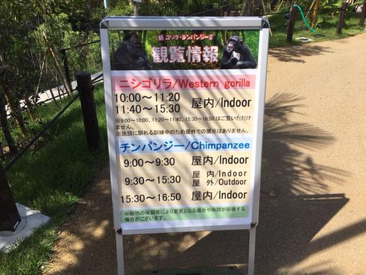 東山動植物園_ゴリラ・チンパンジー舎_001