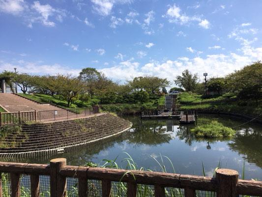 荒子川公園_デイキャンプ場の脇には池も