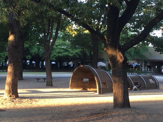 二子山公園_遊具_001