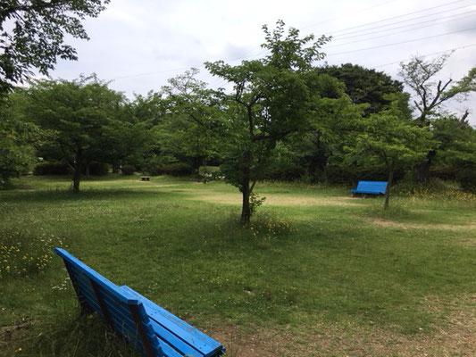 本園その他_002
