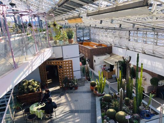 都市緑化植物園_緑と花の休憩所_005