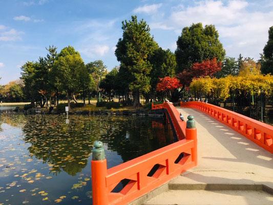 天王川公園_季節の花・植物_004