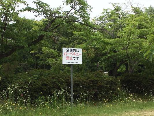 本園その他_003