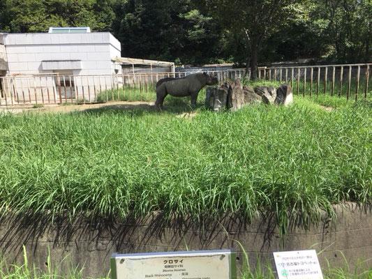 東山動植物園_北園_サイ