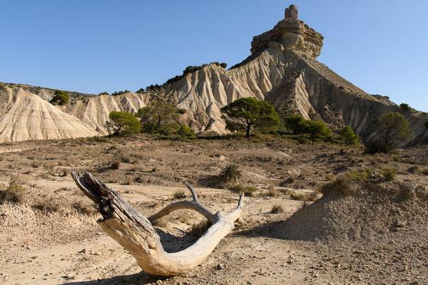 Désert des Bardenas. Vedado de Eguaras. Castillo de Penaflor.