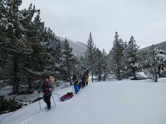 Val d'Aran. Aventure nordique dans les Pyrénées.