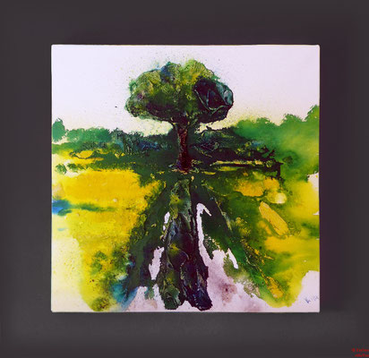 Baum im Rapsfeld, Acryl mixed media, 2014, 70x70x2