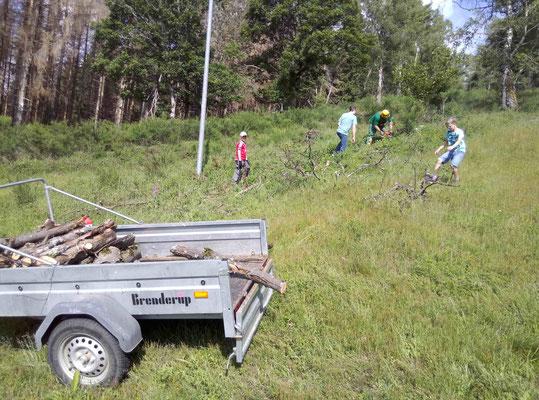 Holzarbeiten am Hang und im Lift