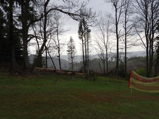 Neue Abholzung seitlich des Skihangs